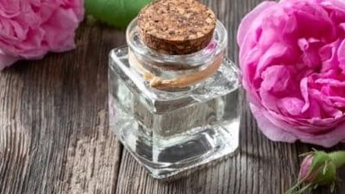La reine des huiles végétales, le rosier muscat